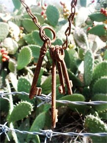 Photo: Keys hanging in front of a bunch of cactus
